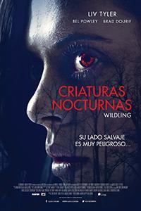 Poster de:1 Criaturas nocturnas