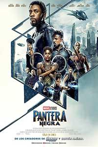 Poster de: Pantera Negra